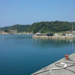 有田漁港 メタルジグにイトヒキアジ 小型のシオ・カンパチの姿も