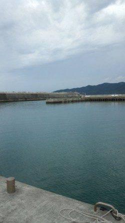 濱ノ瀬漁港 16:00~17:30のエギングでアオリの新子 サイズはこれからに期待