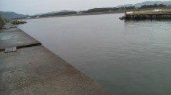 濱ノ瀬漁港 5gのジグでカマスがヒット 小雨の降る中の釣行