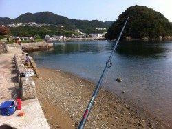 福良湾で早朝からの投げ釣り釣果☆