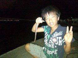 泉佐野 親子で夕涼みがてらの釣行 ちょい投げでアナゴ、エギでタコゲット