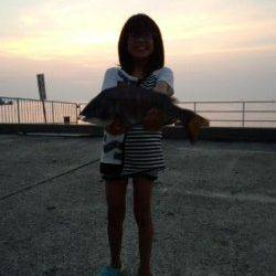 シモツピアーランドでカゴ釣り、立派なチヌ44cm!