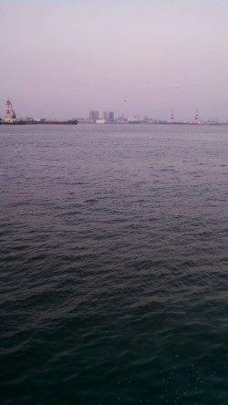 神戸港4,5,6,8防 夕方のジグサビキは苦戦