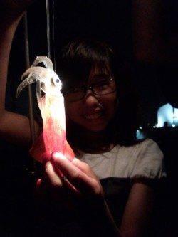 アジュール舞子~西舞子 ファミリーでのエギングでケンサキ計25ハイの満足釣果