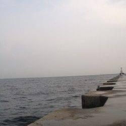 南芦屋浜サビキでの釣果、風が強く、波が荒かった