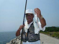 佐野での引き釣り釣果 キス〜19cm×19匹