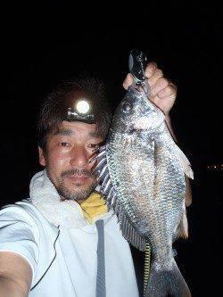 大阪南港でチニング チヌ11枚と快釣!