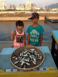 マリーナ釣り公園 夏休みサビキでアジ好調!