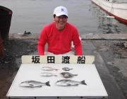 衣奈で筏釣り、チヌ&大きなマルアジ