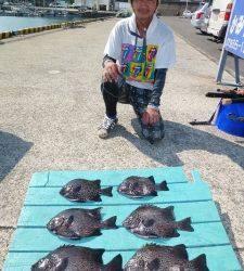 神谷沖一文字 ぶっこみ釣りでイシダイ〜35cm6匹