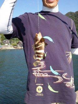 舞鶴親海公園東側の防波堤で投げ釣り&エギングの釣果