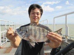 尼崎市魚つり公園で脈釣り、チヌにコショウダイ
