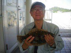 姫路市立遊漁センターではサビキでヒラメが釣れました