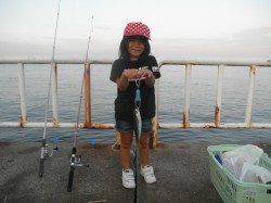 南港海釣り公園 アジを中心にサバ、タチウオ、ガシラなど