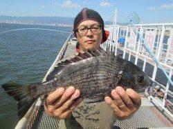 立派なチヌに鈴なりのアジ!尼崎市魚つり公園