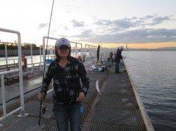 【アジは伸び悩み、サヨリは数揚がっています】尼崎市魚つり公園