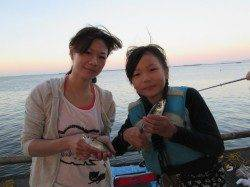 尼崎市魚つり公園 アジを中心に多魚種楽しめる