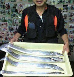 岸和田一文字 アジをエサにタチウオ〜90cmの釣果