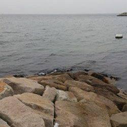 江井ヶ島 穴釣りでガシラ 投げ釣りでキス・アイナメなど