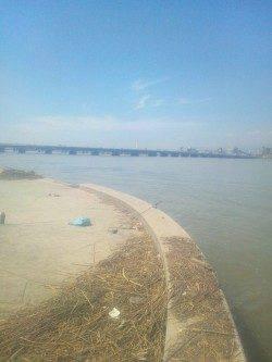 淀川河口 ちょい投げでキビレ&セイゴ 仕掛けも簡単で楽しめます☆