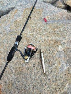 小島 強風の中のアジング釣行 良型狙いも豆アジ・カマス