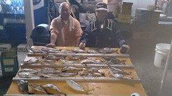 串本萩尾の磯 フカセ釣りでイサギ〜33cm26尾