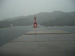 雨の室津港、投げ釣りでキス、アジ、チャリコ