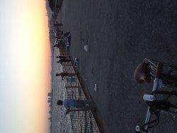 南芦屋浜、ルアーでサバとミニタチウオ