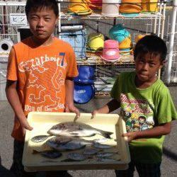 ファミリーでフカセ釣り・サビキで五目釣り達成、マリーナ釣り公園