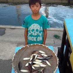 マリーナシティ海釣り公園、サビキと胴突きでの釣果☆