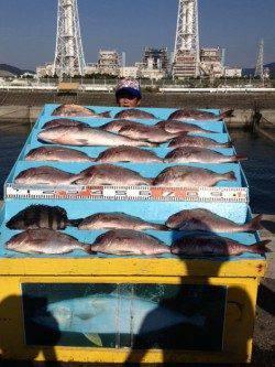 マリーナシティ海洋釣り堀 マダイ・メジロに加えイシダイも