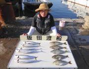 黒島の筏で良型のサバ&アイゴ