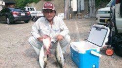 茶釜と黒島、ともにカゴ釣りで小マサとマダイの釣果
