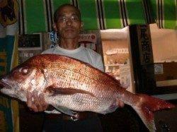 半夜のカゴ釣りで大鯛! 各磯で良型アジも(*^。^*)