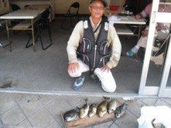 キハチ磯でフカセ釣り、グレ・アイゴ・サンバソウの釣果