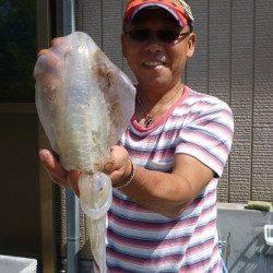 湯浅の磯、最大胴長23cmのアオリ含む8杯の釣果