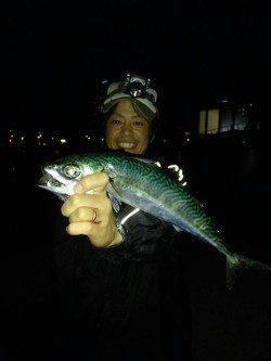 アジュールの大サバシーズン到来! 今年初の大サバを釣り上げました