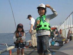 尼崎市魚つり公園 サビキのカタクチイワシ継続中