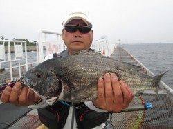 尼崎市立魚つり公園〜エビ撒きウキ釣りでハネ・落とし込みでチヌ