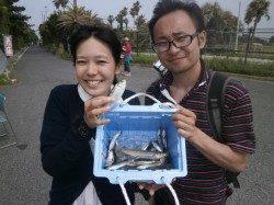 大阪南港魚つり園 風強く悪条件でも全体にイワシ回って釣果あり