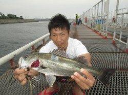 尼崎魚つり公園 午後からの雨でチヌの活性上がり連続HIT!