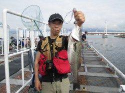 20cmのウミタナゴにハネ 尼崎市立魚つり公園