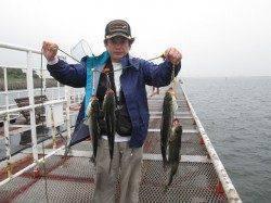 尼崎市立魚つり公園のハネ・セイゴ〜10時頃アタリ多かったです