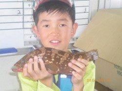姫路市立遊漁センター アコウの釣果も出ています