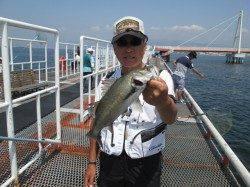 尼崎市立魚つり公園 渋い状況の中ハネをキャッチ
