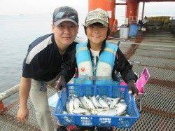 サビキ釣りでサッパ釣れ続けています 尼崎市立魚つり公園