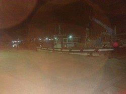 林崎漁港で新子のタコ釣れました〜シーズン開幕かな?