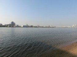 淀川河口 一年振りのハゼ釣り釣行