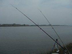 ぶっこみ釣りでうなぎ狙い〜シーズン到来でたくさんの釣り人きてました