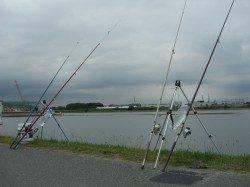 中川、揖保川 18時からのウナギ狙い釣行もチヌがヒット